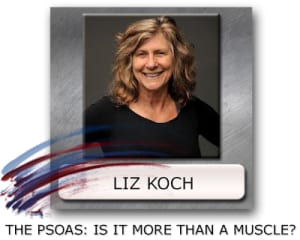 liz-koch-1