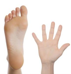 splichal-proprioception-plantar-foor-palmar-hand