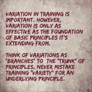 mcconnel-best-training-variation