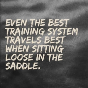 mcconnel-best-training-loose-in-the-saddle