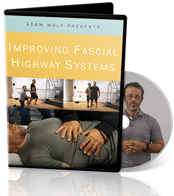 Adam Wolf Improving Fascia Highways Video