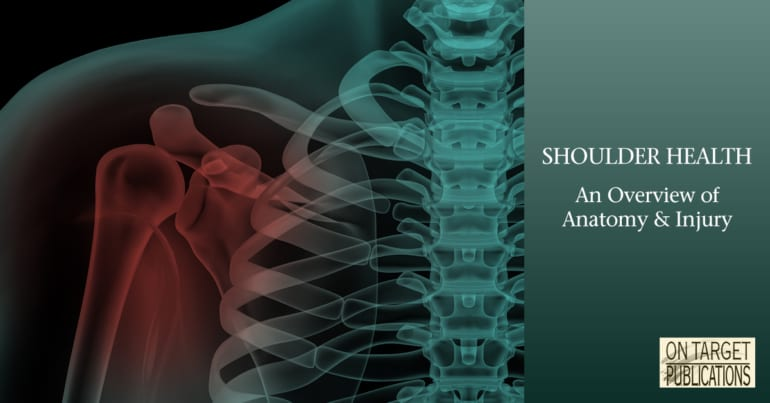 shoulder anatomy, shoulder injury