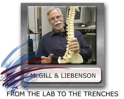 Stuart Mcgill Pain Research - Stu Mcgill Hip Anatomy - Stuart Mcgill And Craig Liebenson