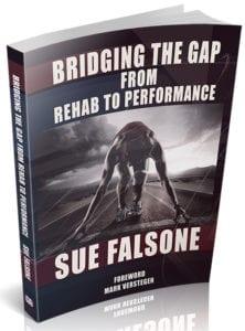 Sue Falsone Bridging the Gap