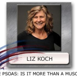Liz Koch the Psoas - Psoas Muscle - Psoas And Midline